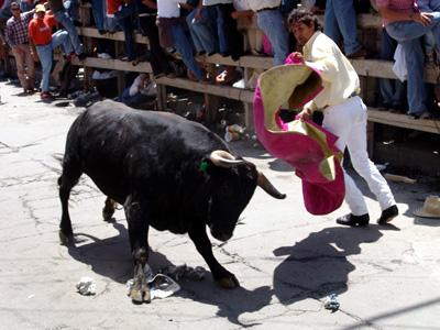 Bullfight picture two