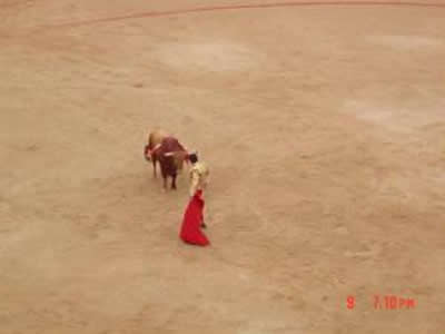 bullfight picture 3